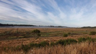 Ni-les'tun Tidal Marsh Restoration Project on the Bandon Marsh National Wildlife Refuge, Oregon. Photo by Roy Lowe/USFWS-Pacific Region (Creative Commons).