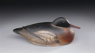 Red-breasted Merganser Drake by A. Elmer Crowell (1862-1952). Photo by David Allen courtesy of Copley Fine Art