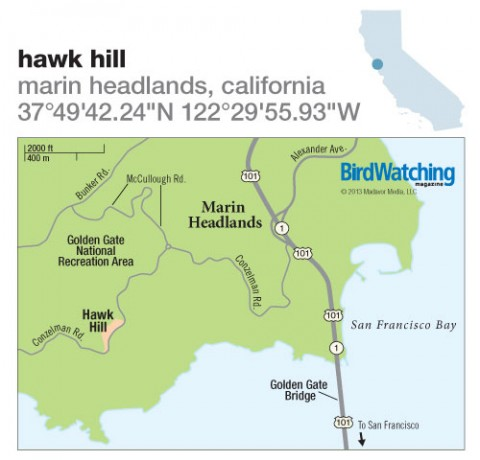 172. Hawk Hill, Marin Headlands, California