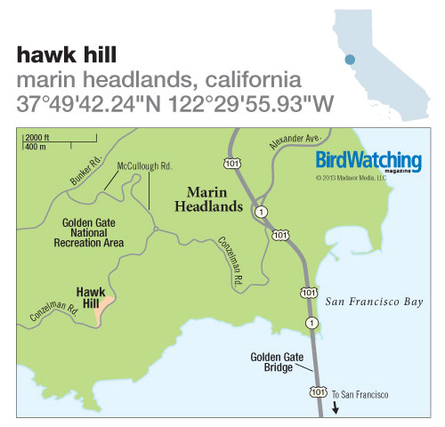 172. Hawk Hill, Marin Headlands, California