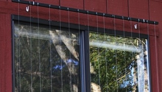 Strings, nettings, and screens that prevent bird-window collisions