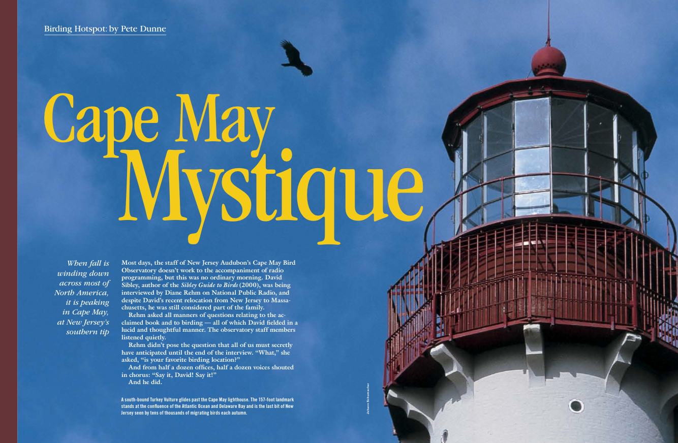 Cape May mystique