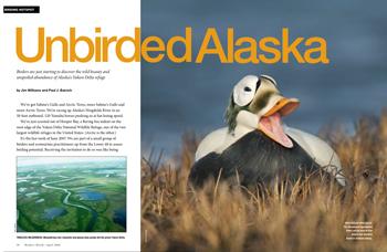 Unbirded Alaska