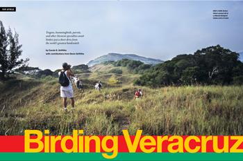 Birding Veracruz