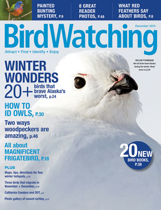 Now on newsstands: A December issue filled with winter wonders