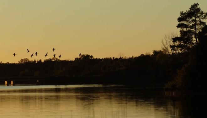 sunset-landing