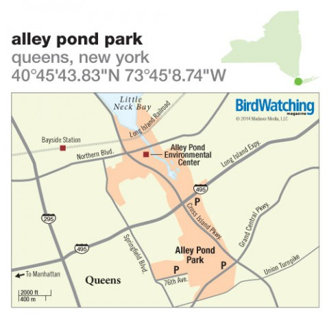 182. Alley Pond Park, Queens, New York