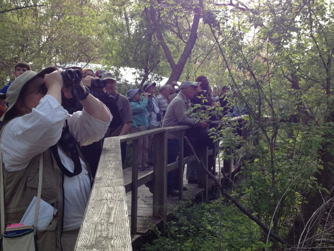 New guides to help birders get started
