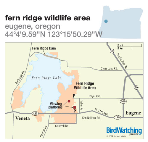 192. Fern Ridge Wildlife Area, Eugene, Oregon