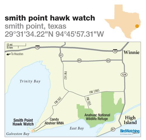 195. Smith Point Hawk Watch, Smith Point, Texas