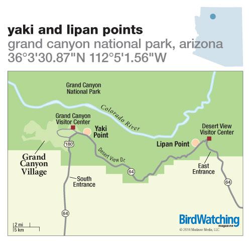 196. Yaki and Lipan Points, Grand Canyon National Park, Arizona