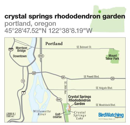 198. Crystal Springs Rhododendron Garden, Portland, Oregon