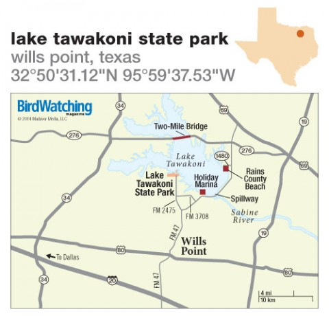 197. Lake Tawakoni State Park, Wills Point, Texas