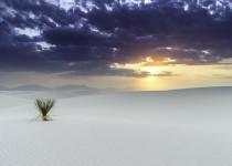 Photo-9-Desert