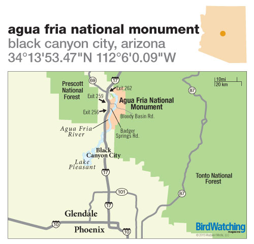 203. Agua Fria National Monument, Black Canyon City, Arizona