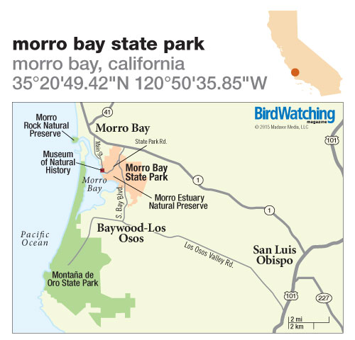 201. Morro Bay State Park, Morro Bay, California