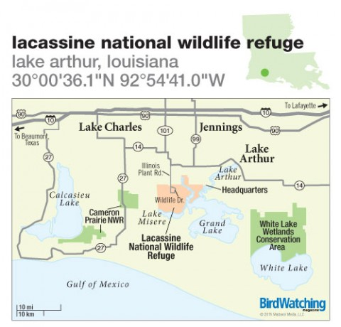 202. Lacassine National Wildlife Refuge, Lake Arthur, Louisiana