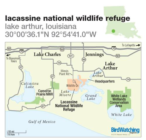 202. Lacassine National Wildlife Refuge, Lake Arthur, Louisiana