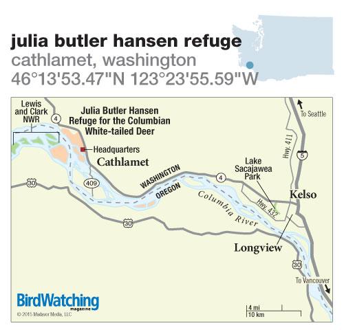 204. Julia Butler Hansen Refuge, Cathlamet, Washington
