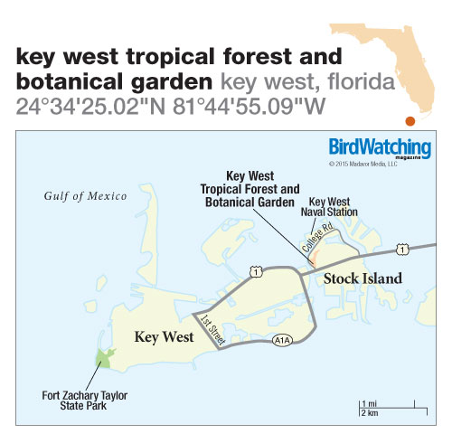 205. Key West Tropical Forest and Botanical Garden, Key West, Florida