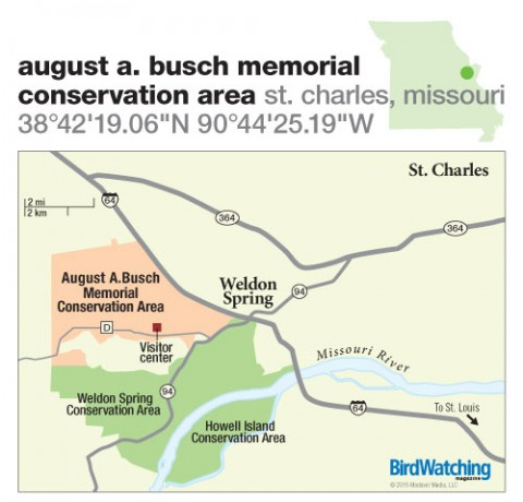 206. August A. Busch Memorial Conservation Area, St. Charles, Missouri