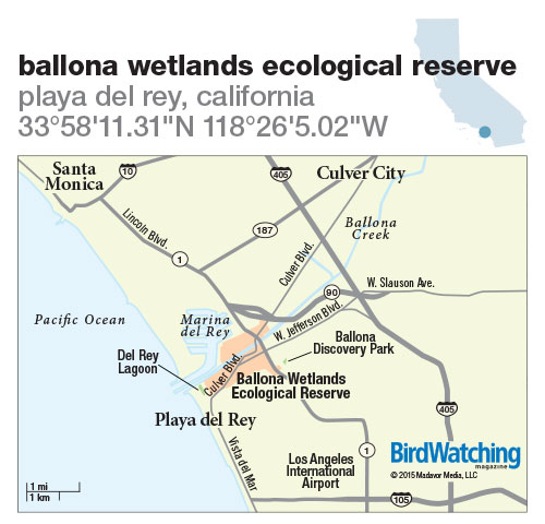 212. Ballona Wetlands Ecological Reserve, Playa Del Rey, California