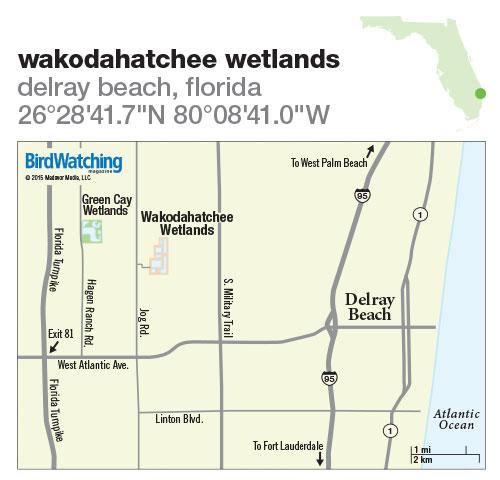 210. Wakodahatchee Wetlands, Delray Beach, Florida