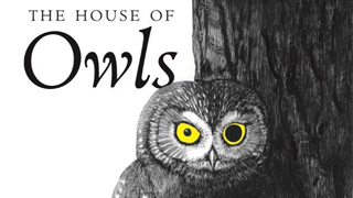 In new book, Tony Angell presents personal stories and stunning drawings of owls