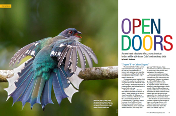 Doors to Cuba opening for birders