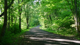 Virginia-Creeper-Trail-660