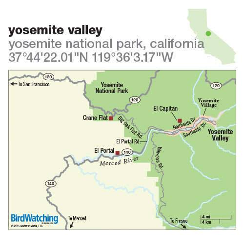 214. Yosemite Valley, Yosemite National Park, California