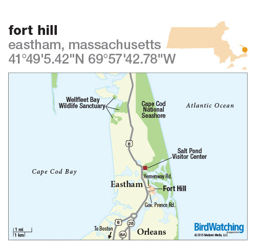 215. Fort Hill, Eastham, Massachusetts