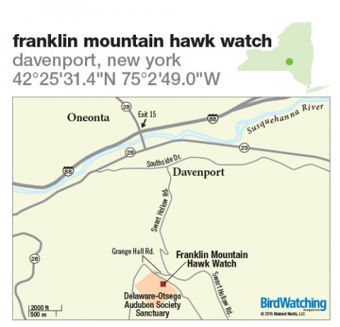 218. Franklin Mountain Hawk Watch, Davenport, New York