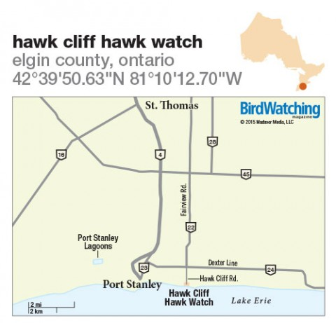 217. Hawk Cliff Hawk Watch, Elgin County, Ontario