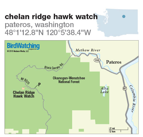 220. Chelan Ridge Hawk Watch, Pateros, Washington