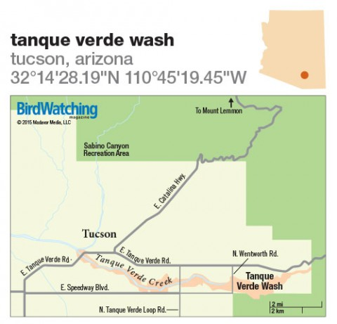 221. Tanque Verde Wash, Tucson, Arizona