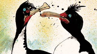 In 'Nextinction,' gonzo artist illustrates birds that can still be saved