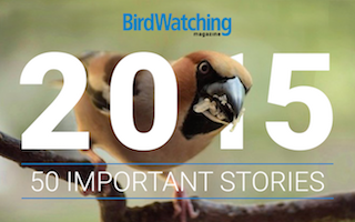 Year in review: The 50 most important stories about birds and birdwatchers of 2015