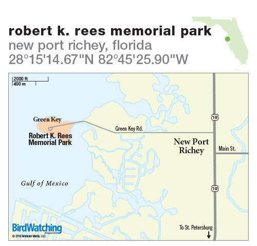 226. Robert K. Rees Memorial Park, New Port Richey, Florida