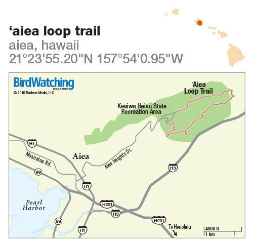 225. 'Aiea Loop Trail, Aiea, Hawaii