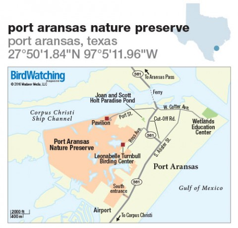 228. Port Aransas Nature Preserve, Port Aransas, Texas