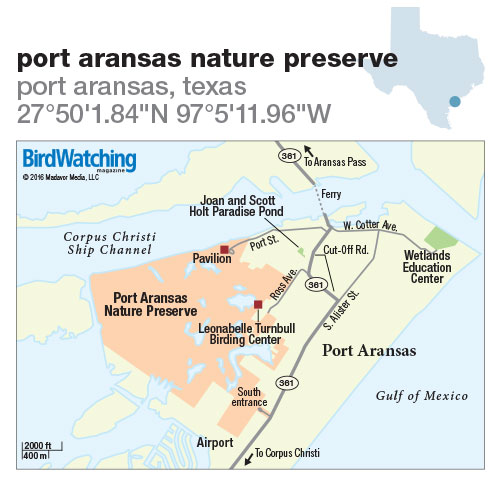 228. Port Aransas Nature Preserve, Port Aransas, Texas