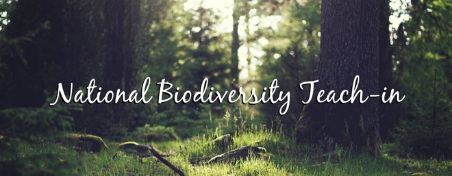 Biodiversity teach-ins connect students with biologists, oceanographers, other experts