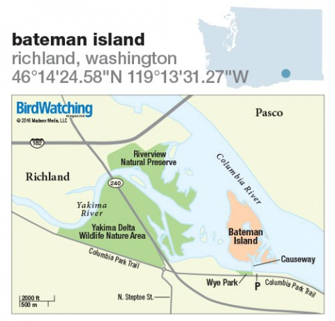 236. Bateman Island, Richland, Washington