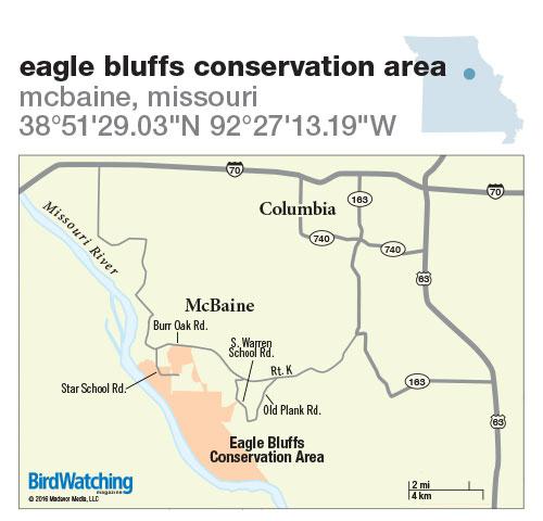 240. Eagle Bluffs Conservation Area, McBaine, Missouri