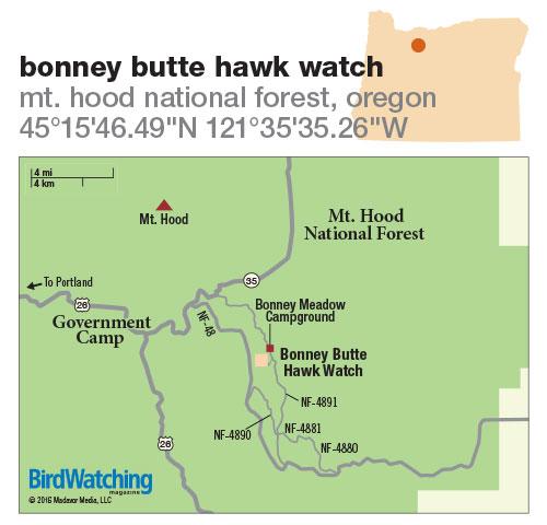 243. Bonney Butte Hawk Watch, Mt. Hood National Forest, Oregon