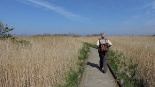 Clay Marshes Nature Reserve
