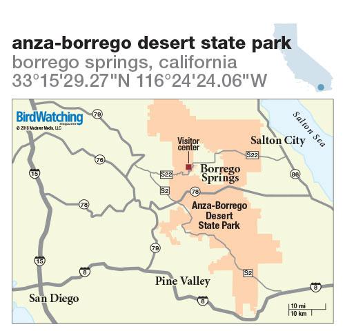 248. Anza-Borrego Desert State Park, Borrego Springs, California