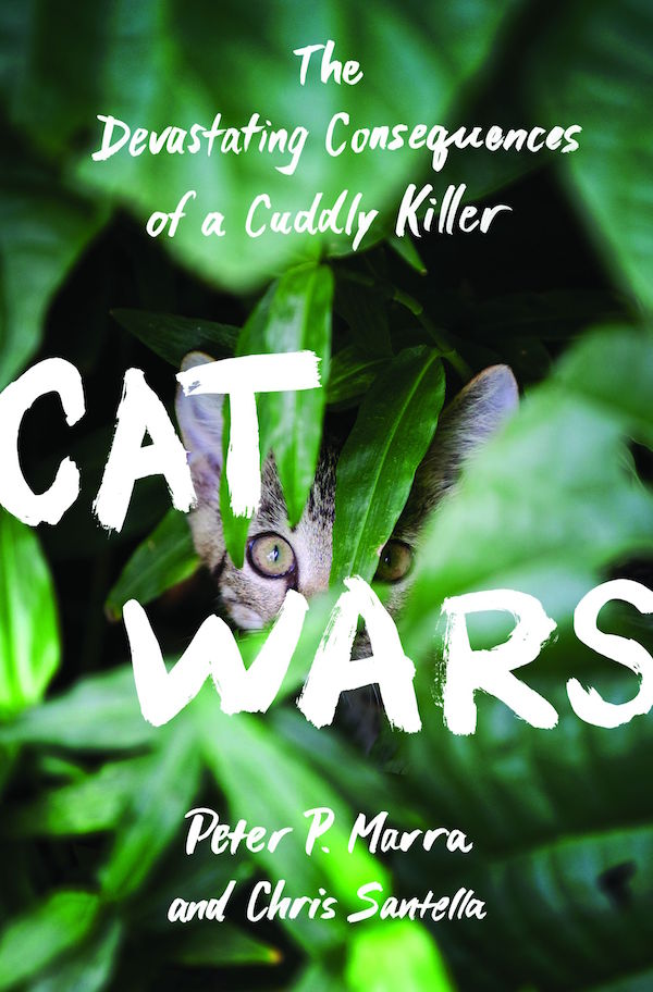 'Cat Wars' is a well-written summary of a complicated problem