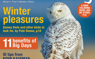 BirdWatching magazine celebrates Snowy Owl and other birds